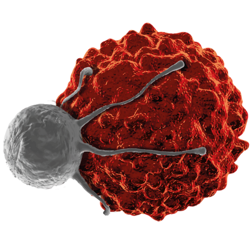 https://cell-therapy-analytics.com/wp-content/uploads/sites/155/2019/08/cropped-cropped-icon-cart-.png